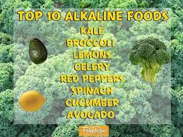 top 10 alkaline foods