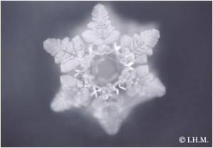 Kristal EM X keramiek