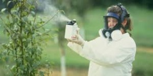 chemical spraying 2